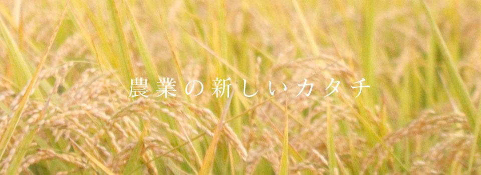 熊本を拠点に農業・加工・デザインの会社「LaTo」