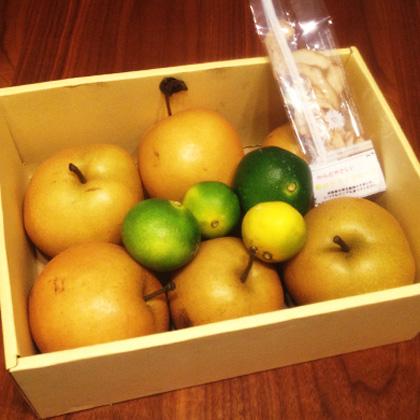 杉果園フルーツ