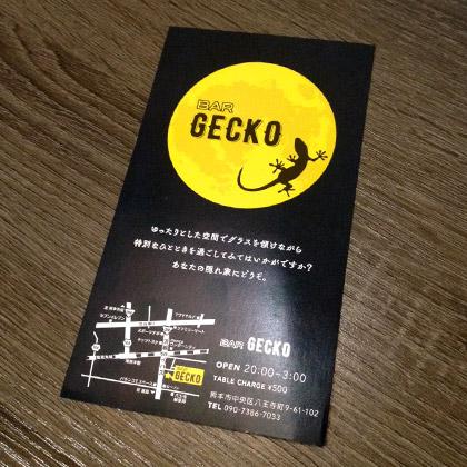 BAR-GECKO-DM